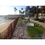 Wood Snow Fence Installed On Beach For Use as Sand Fence 2
