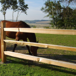 Western Red Cedar Split Rail Fencing