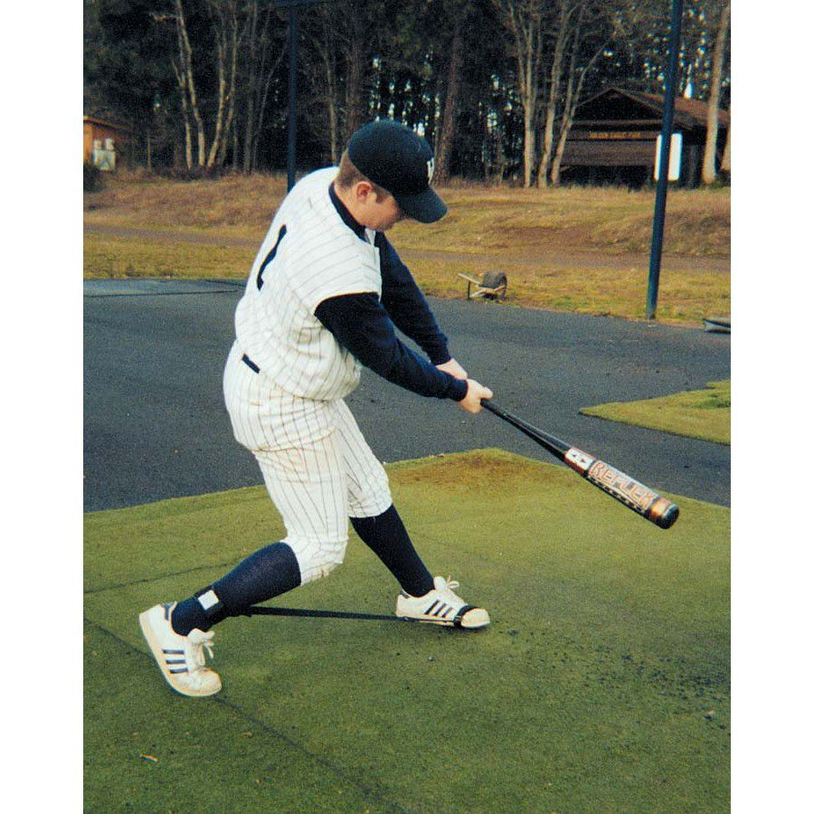 Perfect Stride Batters Trainer