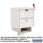 Salsbury Newspaper Holder for Mail Chest or Roadside Mailbox (4315-P)
