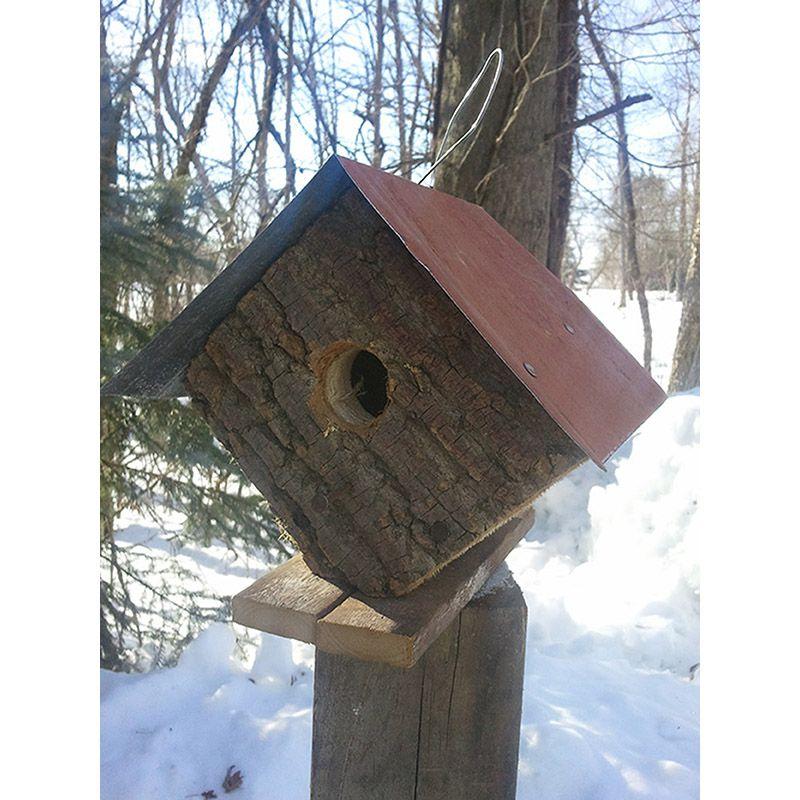 Barkwood Diamond Bird House