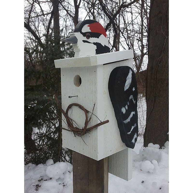 Downy Woodpecker Look-Alike Bird House