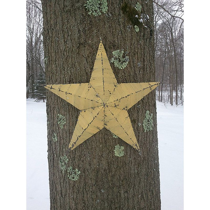 "18"" Handmade Tin Star"