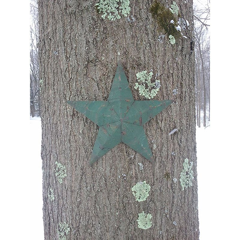 "12"" Handmade Tin Star"