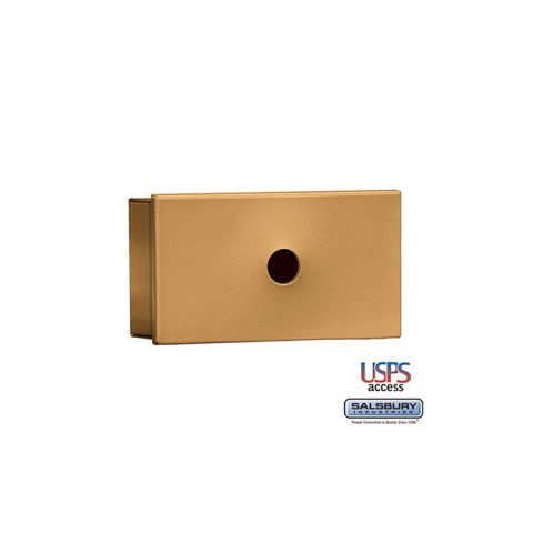 Salsbury Key Keeper, surface mounted brass finish, USPS access