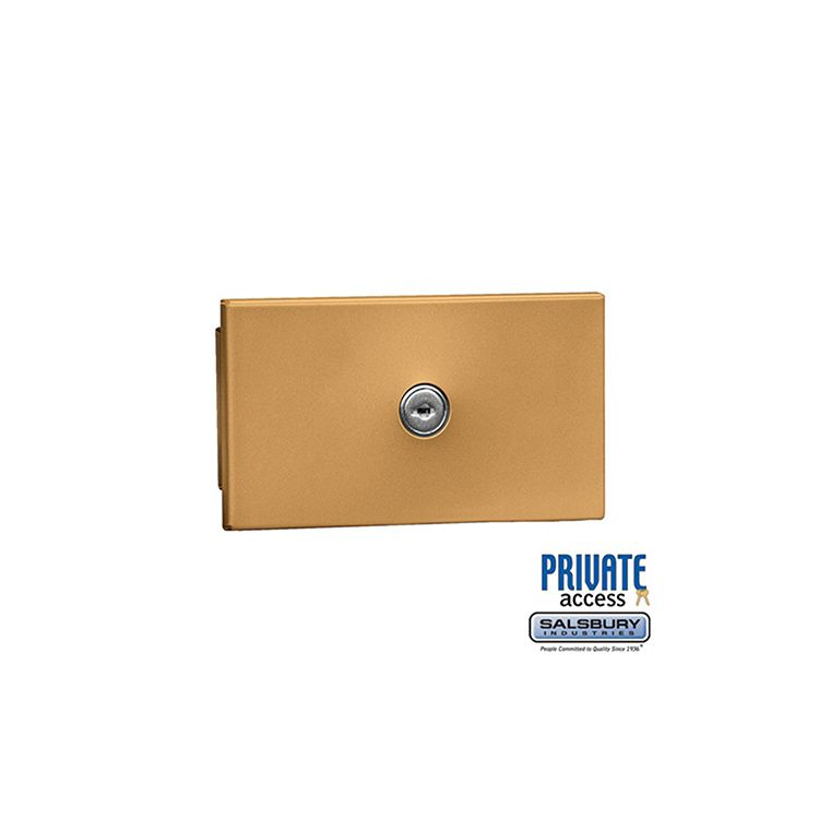 Salsbury Key Keeper, recessed mounted brass finish, private access with two keys